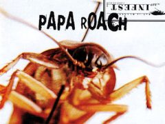 Papa Roach - Tightrope
